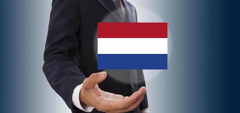 Комплексная и профессиональная помощь с регистрацией компании в Нидерландах