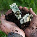 Фермерам дадут деньги на мелиорацию и развитие